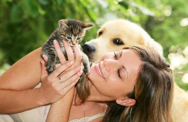 Pet Product Outlet & On-line
